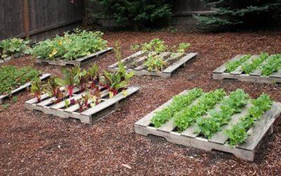 Comment aménager votre jardin avec des palettes ?